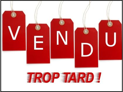 VTT Côte-à-côte Can-Am Defender DPS HD10 2016 à vendre