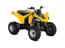 Can-Am DS 250 2018