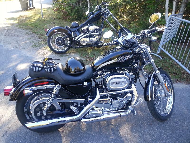 Moto routière/cruiser Harley-Davidson Sportster 2003 à vendre